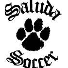 Saluda Tigers Boys Varsity Soccer Spring 16-17 team photo.