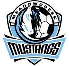 Meadowcreek Mustangs Boys Varsity Soccer Spring 16-17 team photo.
