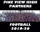 Pine View Panthers Boys Varsity Football Fall 19-20 team photo.