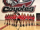 Combs Coyotes Girls Varsity Volleyball Fall 18-19 team photo.