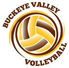 Buckeye Valley Barons Girls Varsity Volleyball Fall 18-19 team photo.