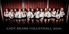 Bear River Bears Girls Varsity Volleyball Fall 18-19 team photo.