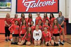 Austintown-Fitch Falcons Girls Varsity Volleyball Fall 18-19 team photo.