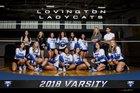 Lovington Wildcats Girls Varsity Volleyball Fall 18-19 team photo.