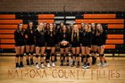 Natrona County Mustangs Girls Varsity Volleyball Fall 18-19 team photo.