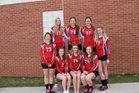 Niobrara County Tigers Girls Varsity Volleyball Fall 18-19 team photo.