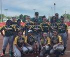 Firestone Falcons Girls Varsity Softball Spring 16-17 team photo.