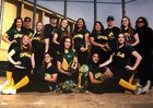 Capuchino Mustangs Girls Varsity Softball Spring 16-17 team photo.