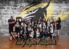 Alamogordo Tigers Girls Varsity Softball Spring 16-17 team photo.