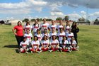 McFarland Cougars Girls Varsity Softball Spring 16-17 team photo.