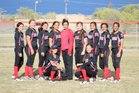 Robertson Cardinals Girls Varsity Softball Spring 16-17 team photo.