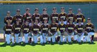 Arlington Lions Boys Varsity Baseball Spring 13-14 team photo.