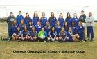 Oscoda Owls Girls Varsity Soccer Spring 14-15 team photo.