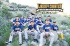 Liberty Charter Lions Boys Varsity Baseball Spring 15-16 team photo.