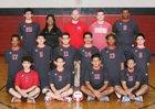 Blue Island Eisenhower Cardinals Boys Varsity Volleyball Spring 17-18 team photo.