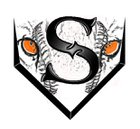 Sterling Tigers Boys Varsity Baseball Spring 14-15 team photo.