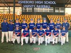 Asheboro Blue Comets Boys Varsity Baseball Spring 17-18 team photo.