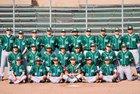 Sacred Heart Cathedral Preparatory Fightin' Irish Boys Varsity Baseball Spring 17-18 team photo.