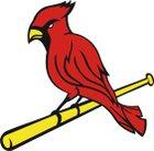 MacArthur Cardinals Boys Varsity Baseball Spring 17-18 team photo.