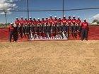 Logan Longhorns Boys Varsity Baseball Spring 17-18 team photo.