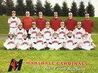Marshall Cardinals Boys Varsity Baseball Spring 17-18 team photo.
