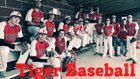 Pangburn Tigers Boys Varsity Baseball Spring 17-18 team photo.