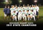 Berchmans Academy Saints Boys Varsity Baseball Spring 17-18 team photo.