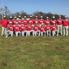 McGehee Owls Boys Varsity Baseball Spring 17-18 team photo.