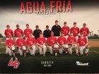 Agua Fria Owls Boys Varsity Baseball Spring 17-18 team photo.