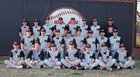 Magnet Cove Panthers Boys Varsity Baseball Spring 17-18 team photo.