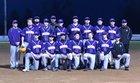 Elmira Falcons Boys Varsity Baseball Spring 17-18 team photo.