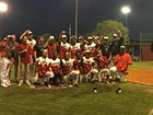 Lanier County Bulldogs Boys Varsity Baseball Spring 17-18 team photo.
