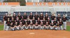 New Hanover Wildcats Boys Varsity Baseball Spring 17-18 team photo.