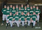 Belle Vernon Leopards Boys Varsity Baseball Spring 17-18 team photo.