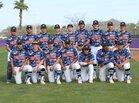 Westwood Warriors Boys Varsity Baseball Spring 17-18 team photo.