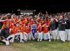 Vacaville Bulldogs Boys Varsity Baseball Spring 17-18 team photo.