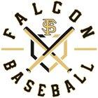 Santee Falcons Boys Varsity Baseball Spring 17-18 team photo.