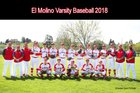 El Molino Lions Boys Varsity Baseball Spring 17-18 team photo.