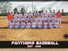 Clarksville Panthers Boys Varsity Baseball Spring 17-18 team photo.
