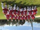 Mansfield Tigers Boys Varsity Baseball Spring 17-18 team photo.