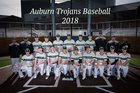 Auburn Trojans Boys Varsity Baseball Spring 17-18 team photo.