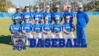 Bradwell Institute Tigers Boys Varsity Baseball Spring 17-18 team photo.