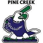Pine Creek Eagles Boys Varsity Baseball Spring 17-18 team photo.