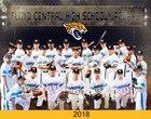 Floyd Central Jaguars Boys Varsity Baseball Spring 17-18 team photo.
