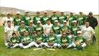Thoreau Hawks Boys Varsity Baseball Spring 17-18 team photo.