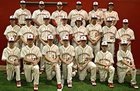 Pocahontas Redskins Boys Varsity Baseball Spring 17-18 team photo.