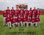 Caledonia Confederates Boys Varsity Baseball Spring 17-18 team photo.