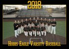 Hobbs Eagles Boys Varsity Baseball Spring 17-18 team photo.