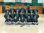 Valley Springs Tigers Boys Varsity Baseball Spring 17-18 team photo.