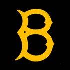 Bassett Olympians Boys Varsity Baseball Spring 17-18 team photo.